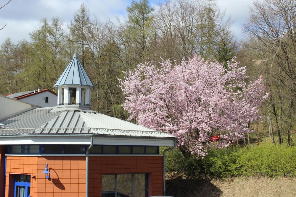 Orthopädische Klinik Hessisch Lichtenau - Lichtenau Kapelle